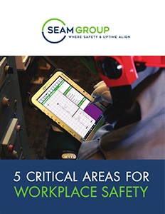 SEAM Group's Approach to Workplace Safety